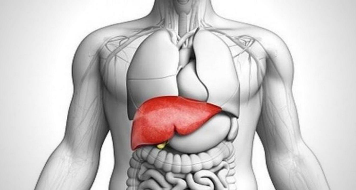 remedy for hepatitis malaysia