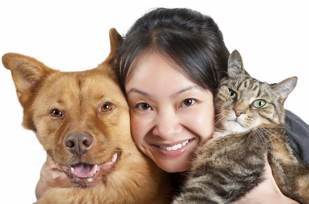 What To Know Before Bringing Home You Furry Friend Home?