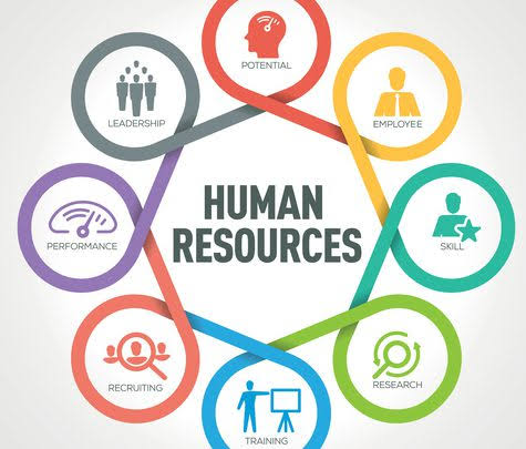 What Is Human Resource and Why Are They Important?